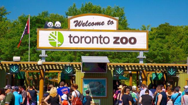 ТОП 10 Самые большие зоопарки в мире